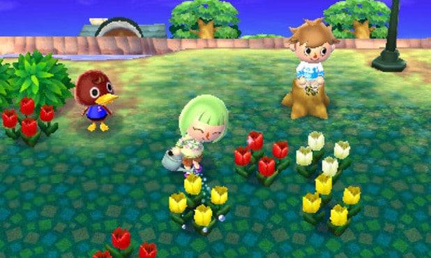 Allen Chi Animal Crossing